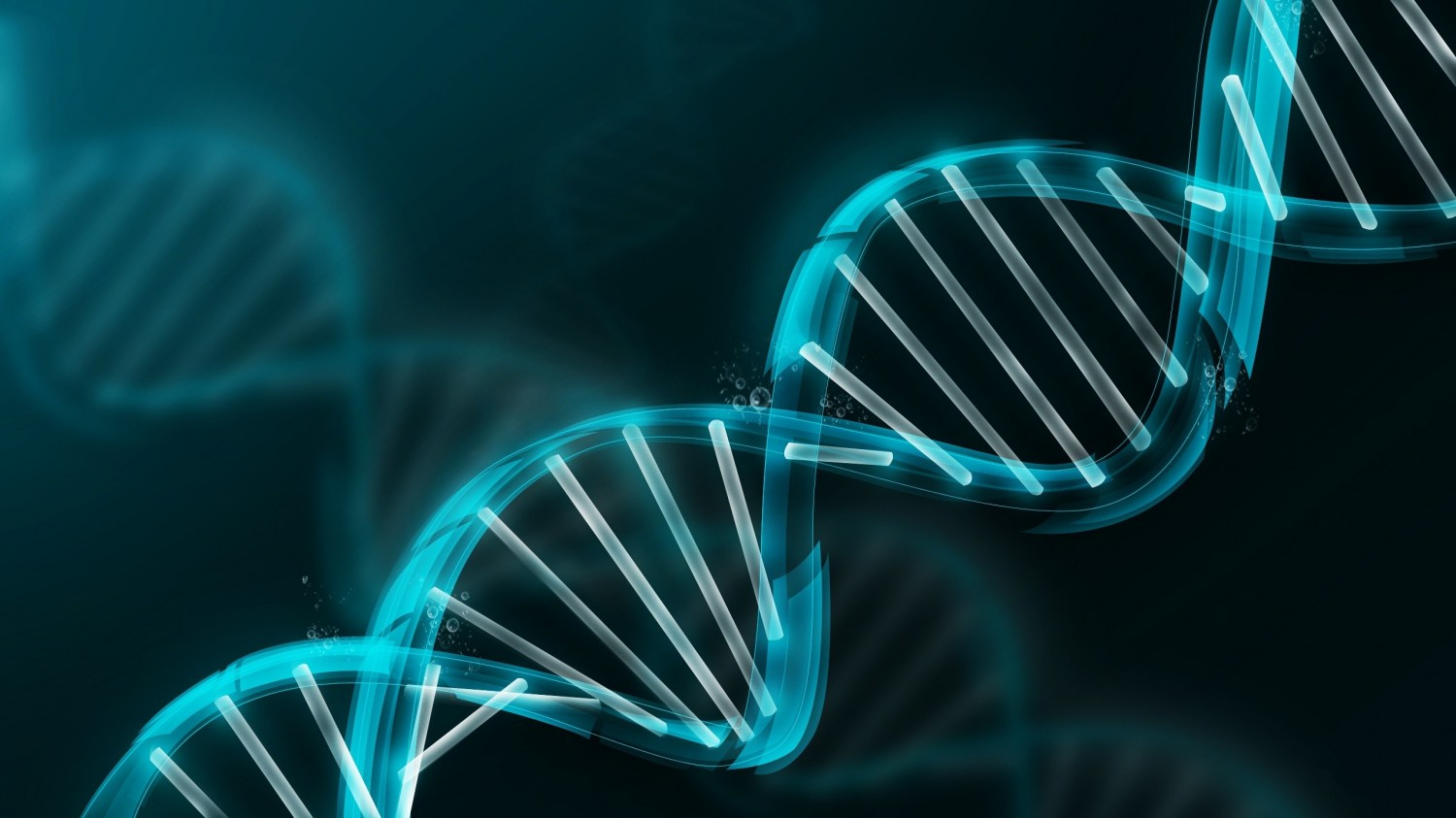 cropped-correct-dna.jpg