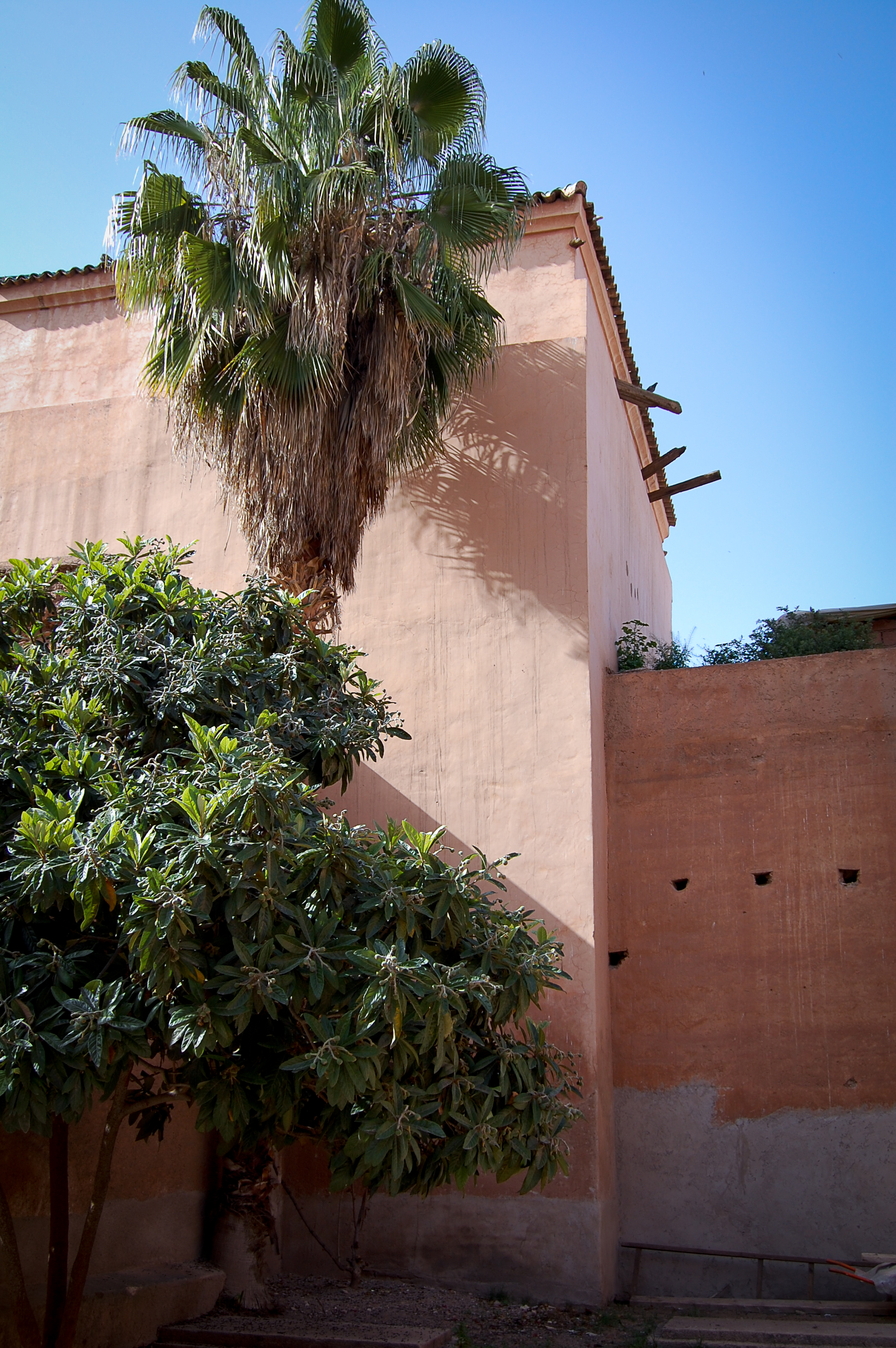 morocco (28 of 39).jpg