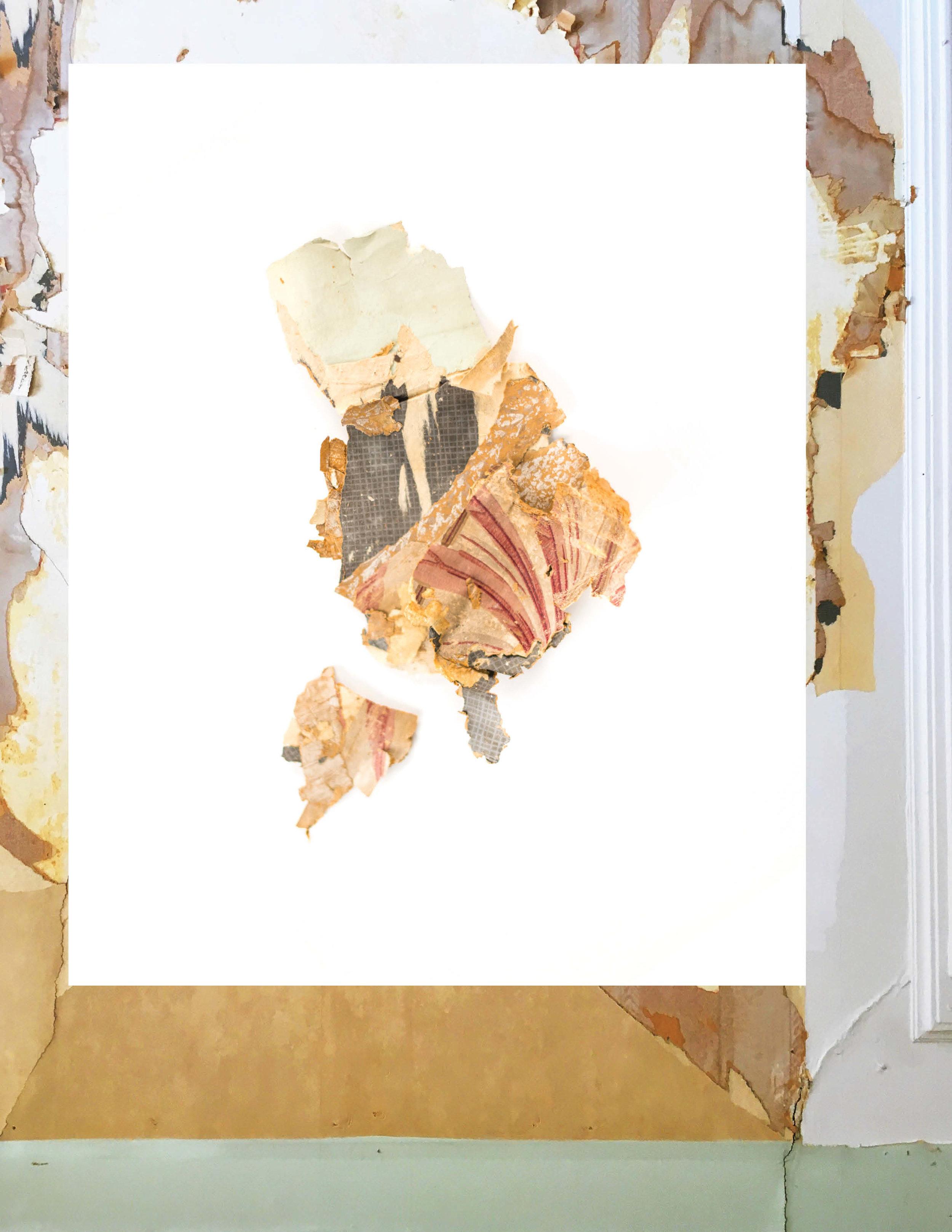 maisonbodega_wallpaperarchaeology
