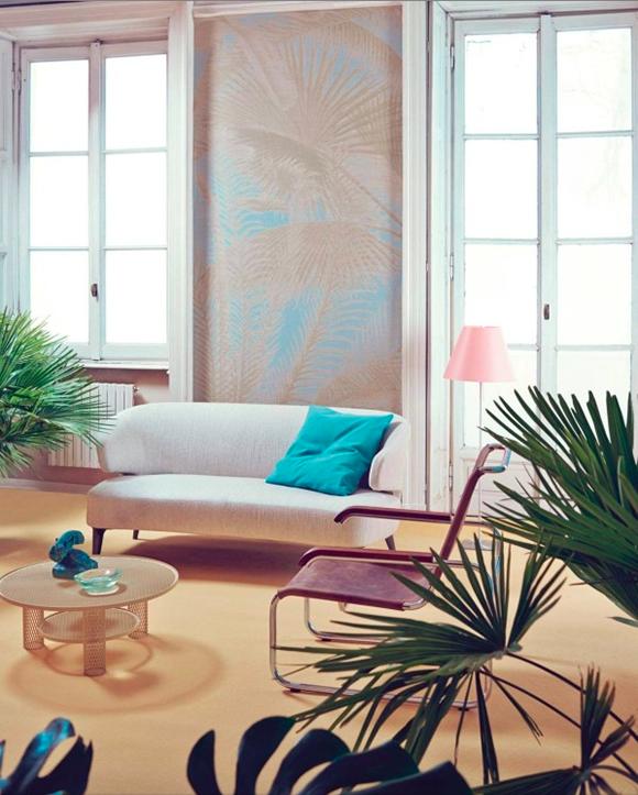 studio-pepe-palm.png