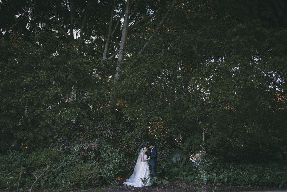 AlanMcDonald_weddings.jpg