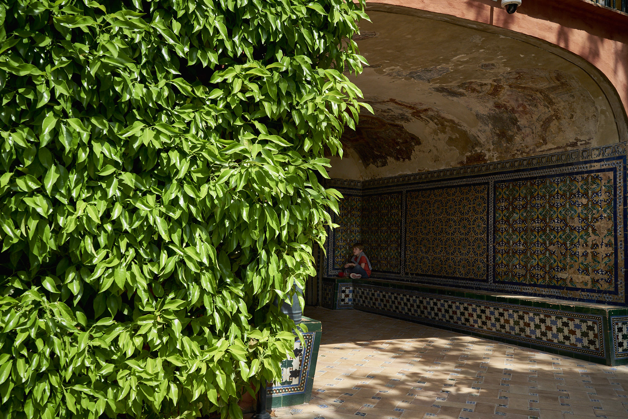 Sevilla Alcazar Plaza España Fotos DSC03672.jpg