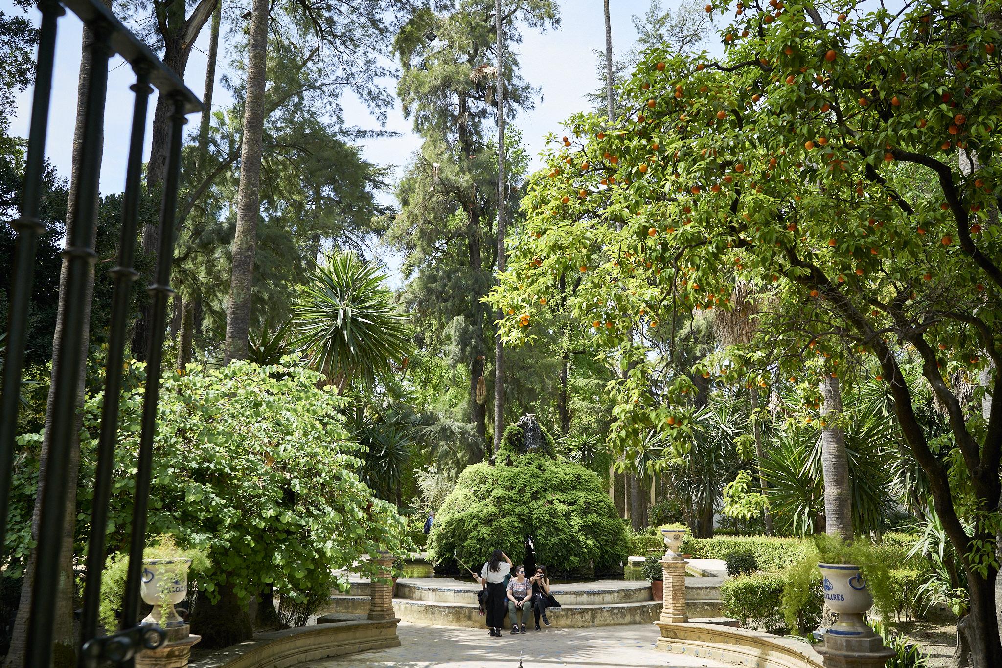 Sevilla Alcazar Plaza España Fotos DSC03685.jpg