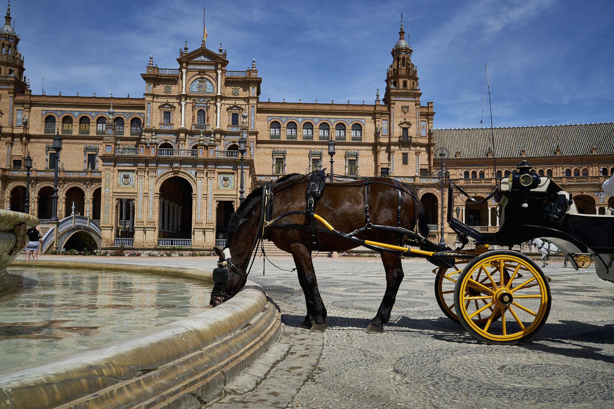 Sevilla Alcazar Plaza España Fotos DSC03717.jpg