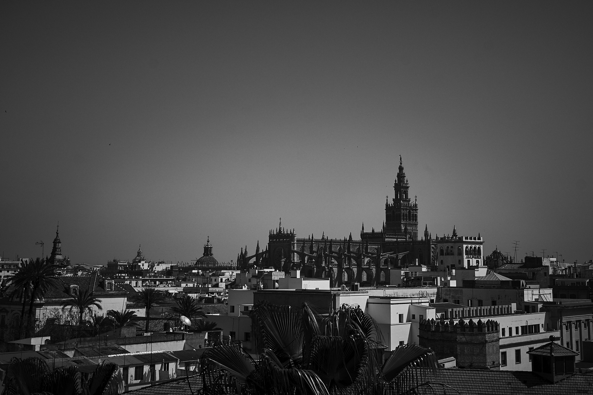 Catedral Sevilla DSC03751.jpg