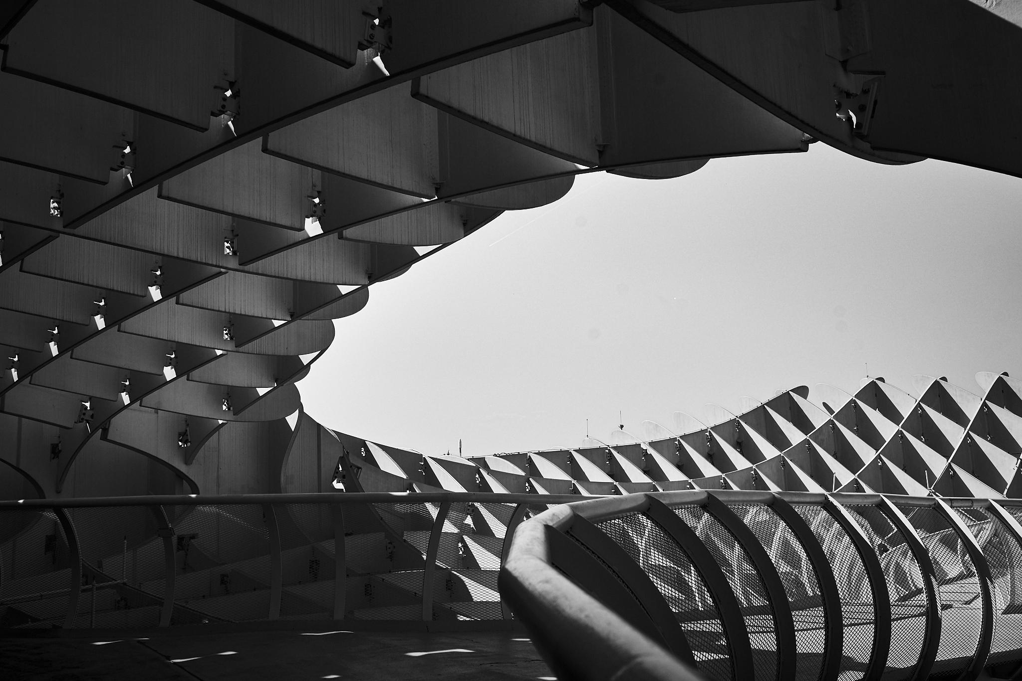 Catedral Sevilla DSC03875.jpg