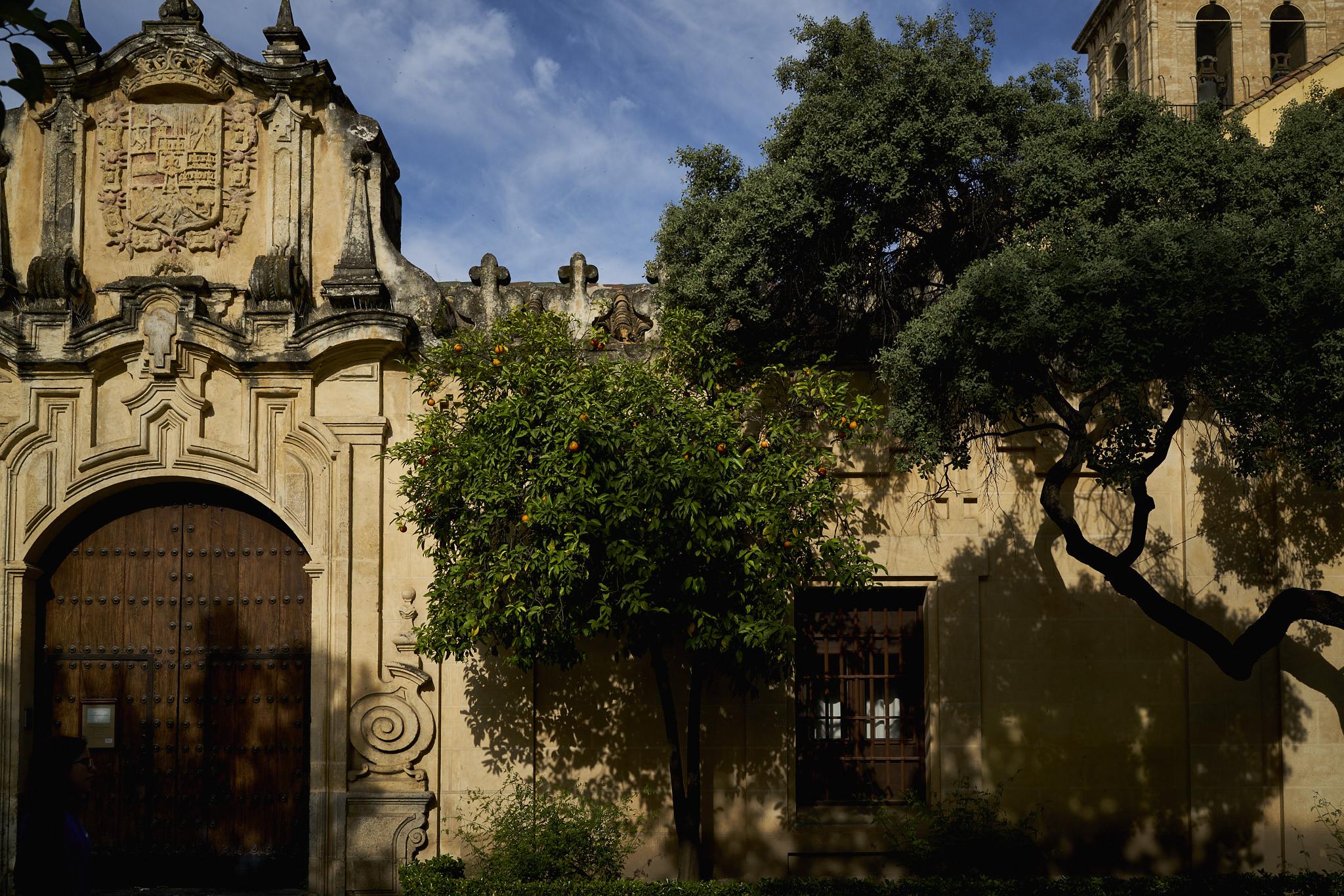 Córdoba y Granada DSC03887.jpg