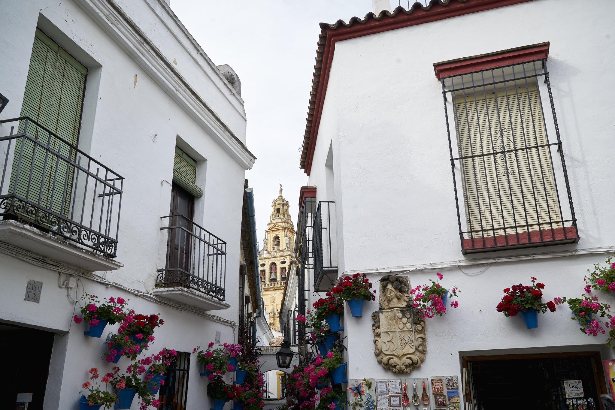 Córdoba y Granada DSC03903.jpg