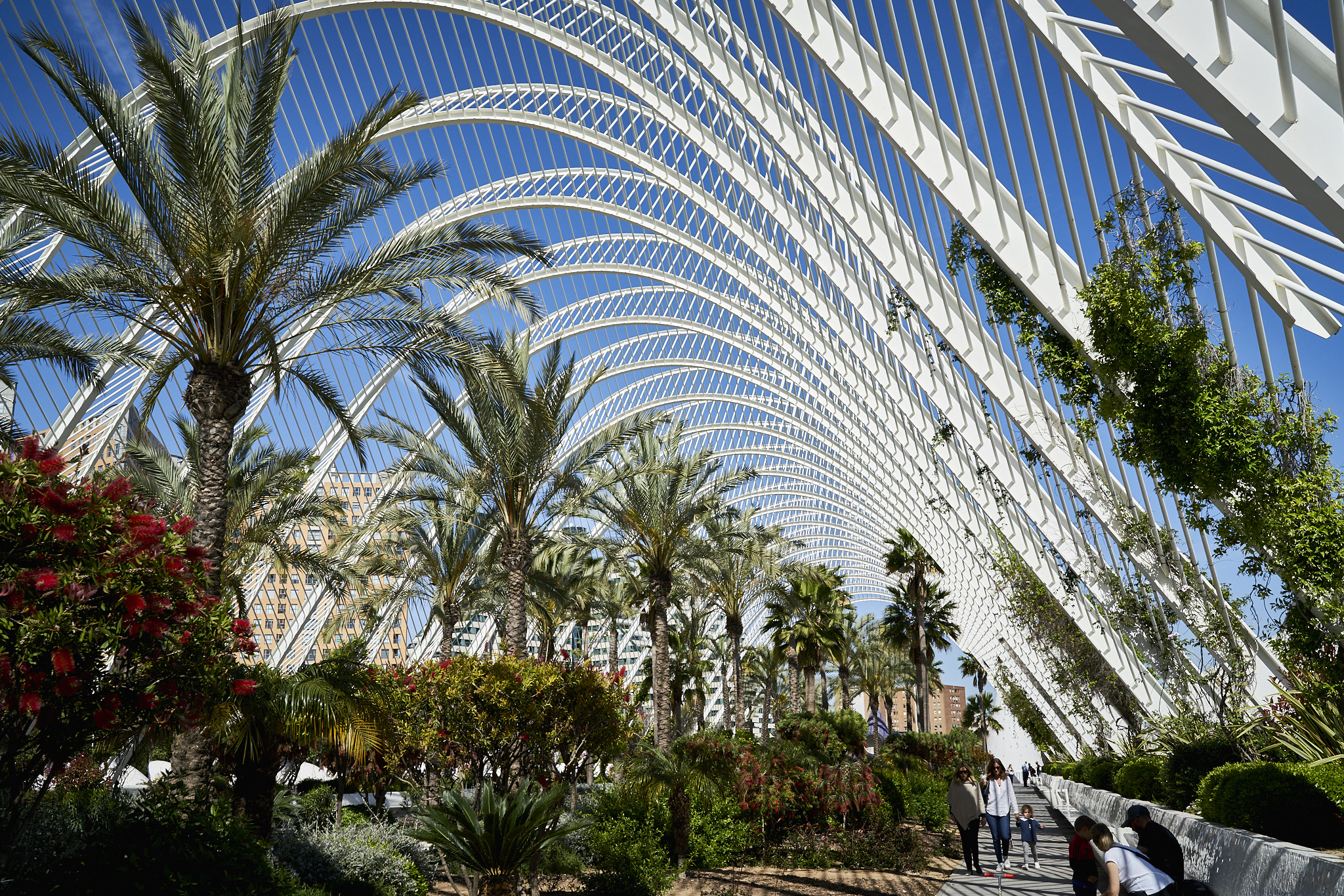 Valencia Spain España DSC04100.jpg