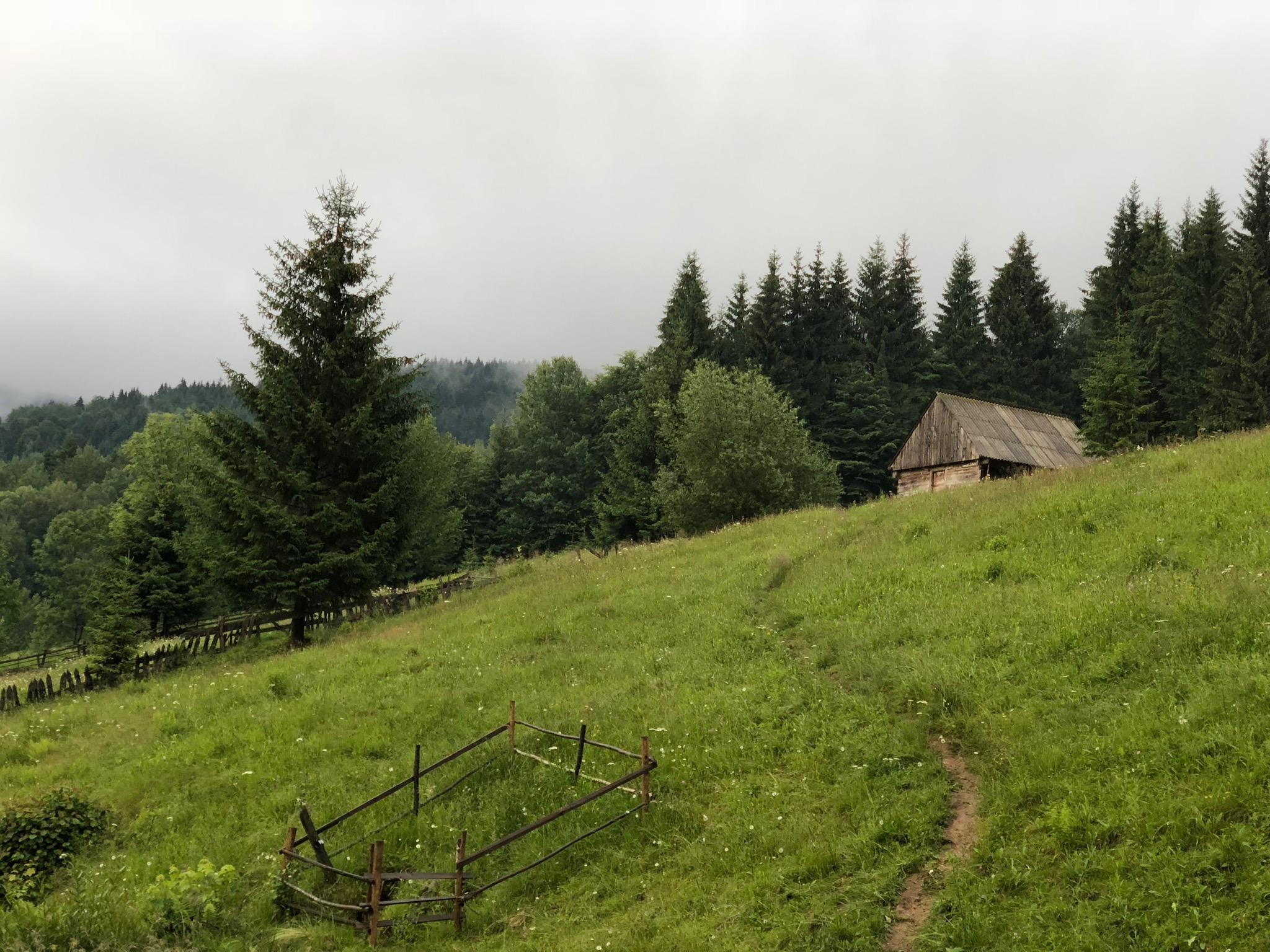 Valea Negrilesii