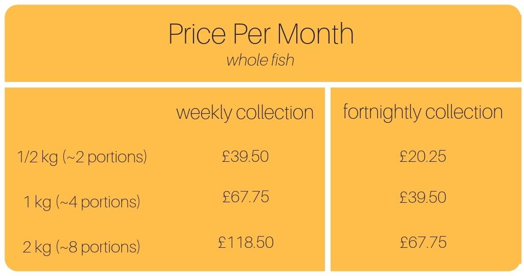 price+per+month.jpg