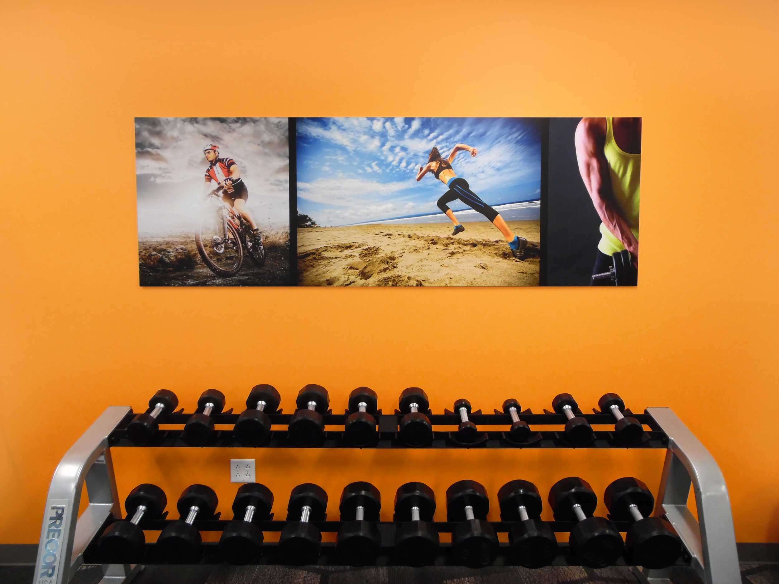 Fitness Center Wall Graphic