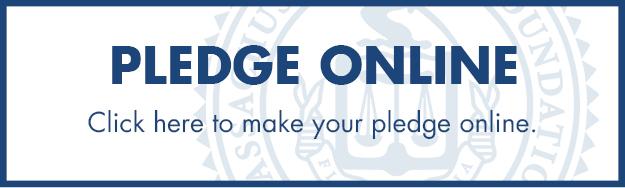 pledge online button.jpg
