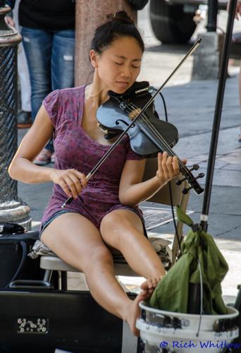 Street Musician-1.jpg