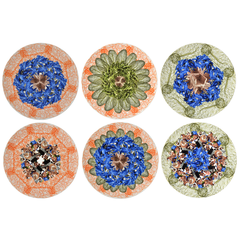 Euro Tropiques dinner plate set of 6 by Campana Brothers for Bernardaud (2011)