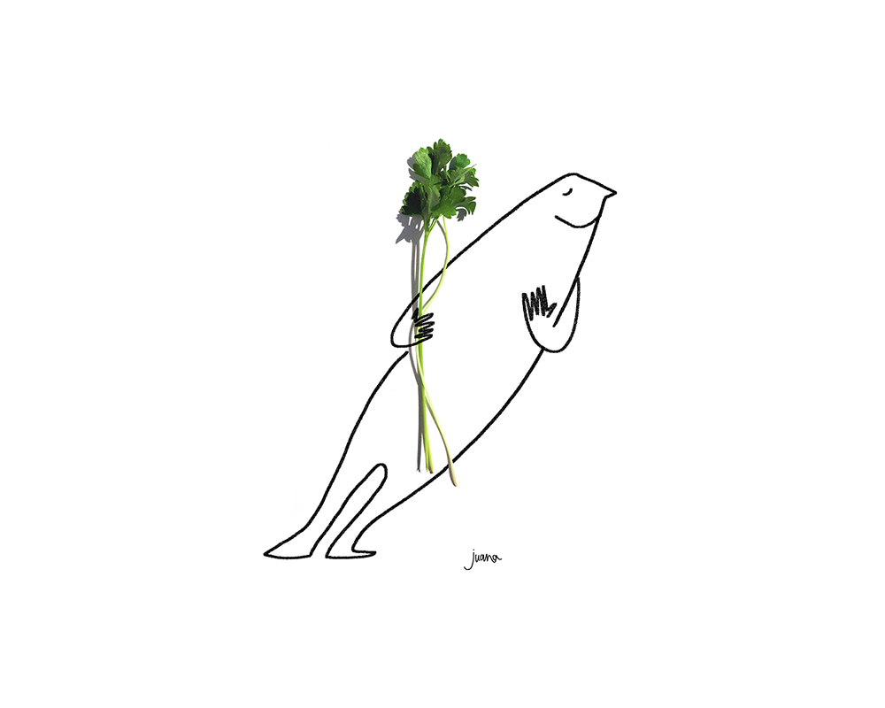 parsley-web.jpg