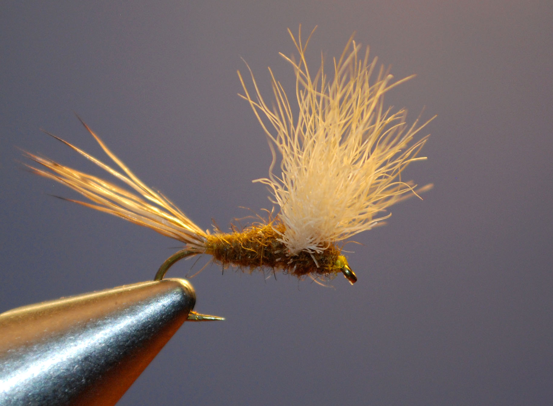 """Fran Better's classic fly pattern, """"The Usual"""", modified for possible use on Colorado's high country streams later this season."""