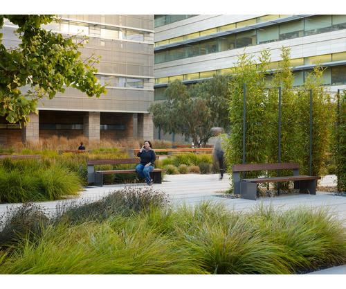 Smith Cardiovascular Research Building — Andrea Cochran