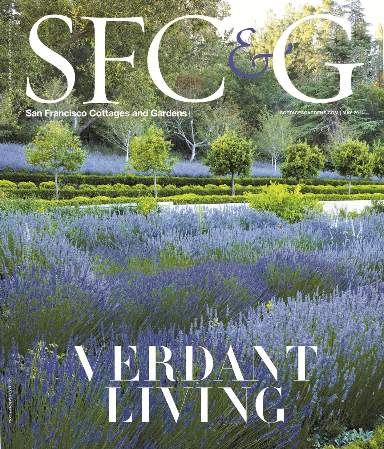 SFCG_Cover.jpg