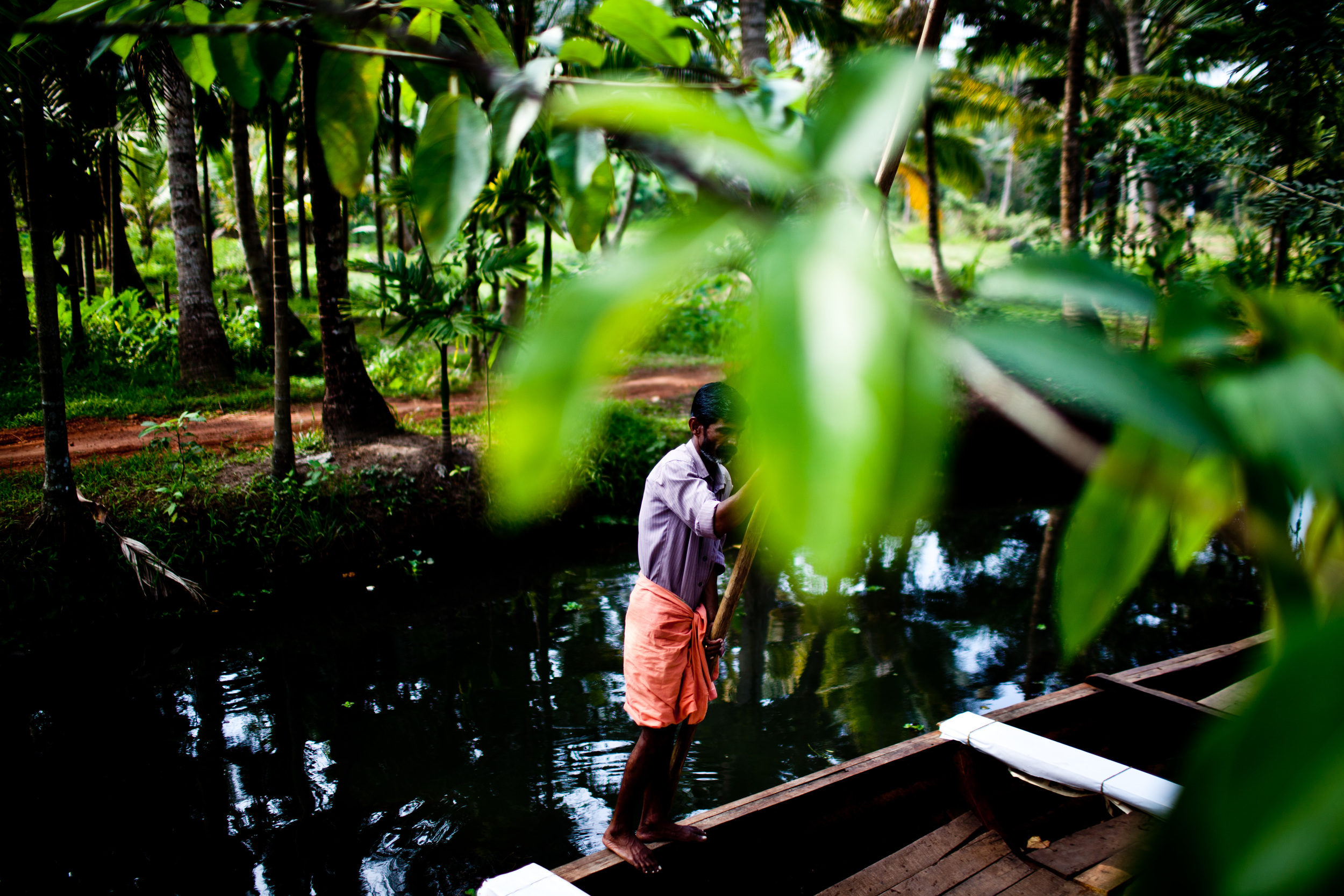 A man paddles a boat in the Backwaters in Kerala, India.