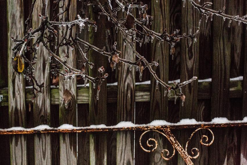washington-dc-ice-storm-02.JPG