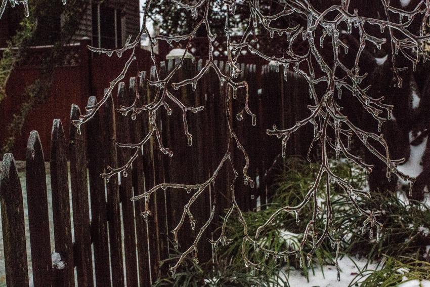 washington-dc-ice-storm-03.JPG