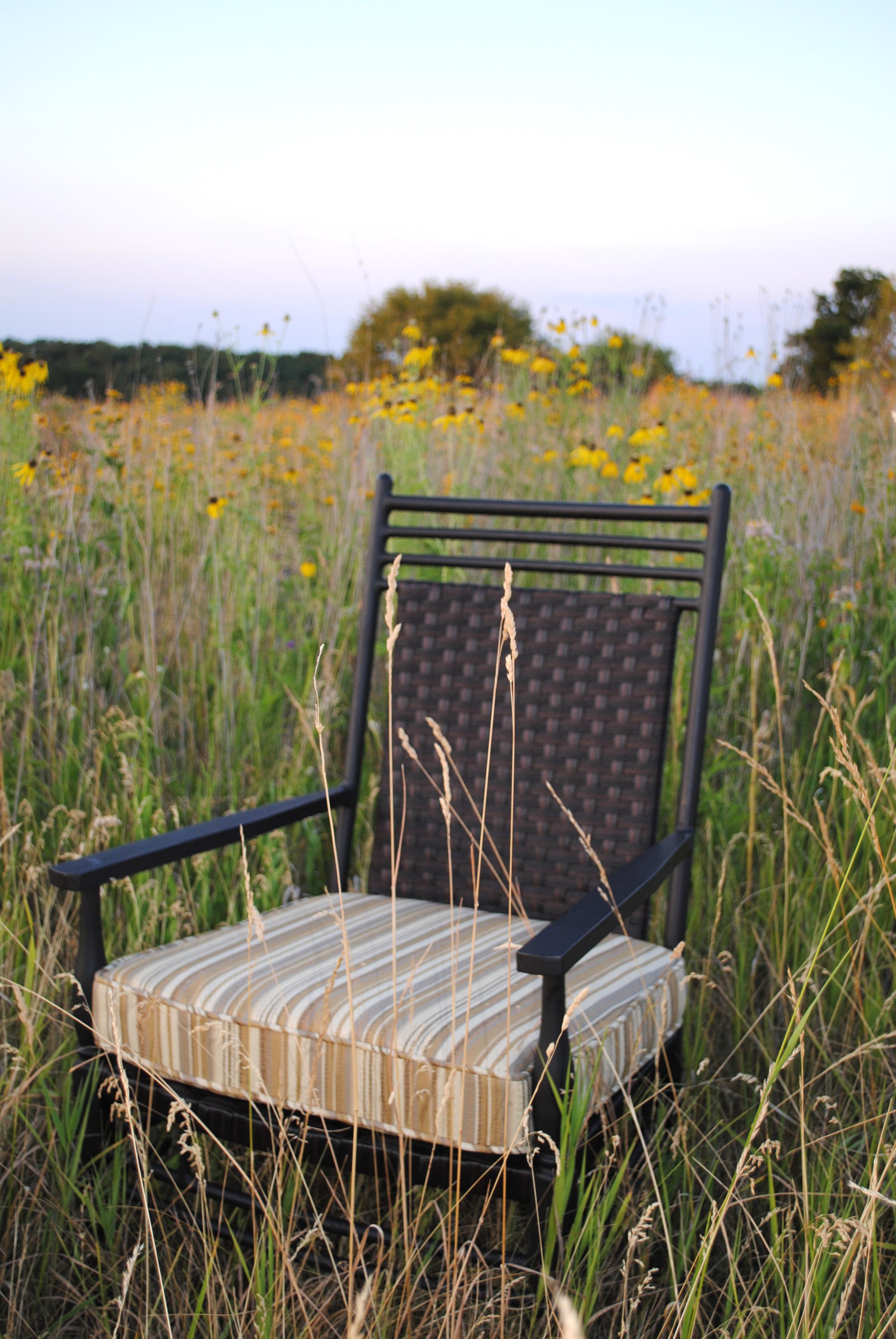 St Martin Chair Prairie.jpg