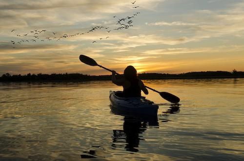 Kayak_loRes.jpg