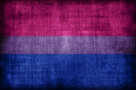 vintage-bisexual-flag-LGBT.jpg
