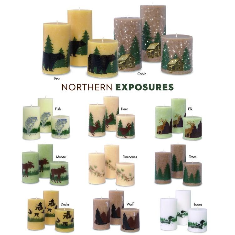 Northern Exposures.jpg