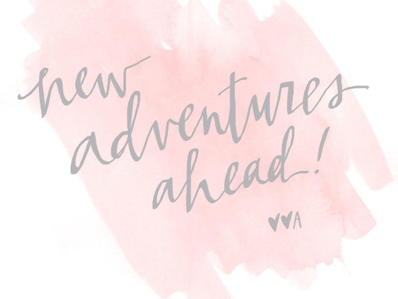 new adventures ahead! // [hello, bird.]