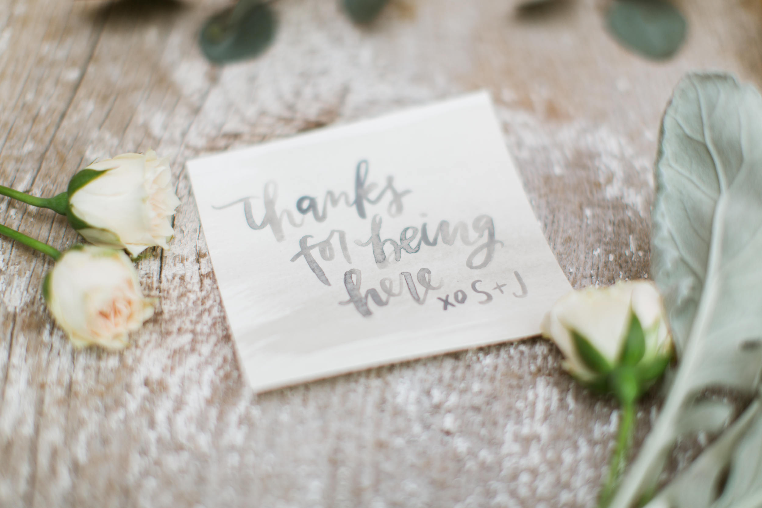 calligraphy by hello, bird. // photo courtesy of emily wren photography
