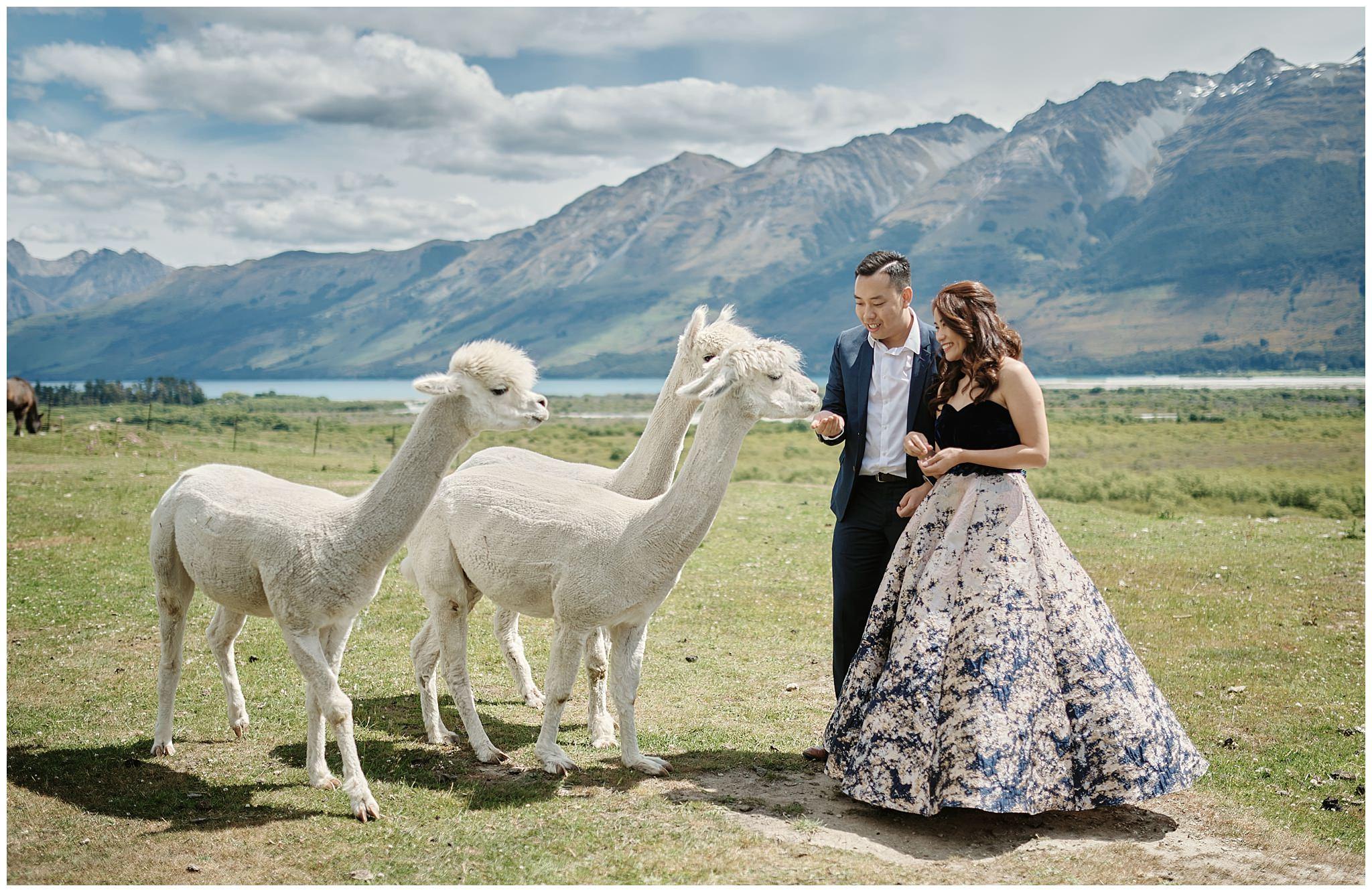 Queenstown New Zealand Prewedding Photographer_0052.jpg