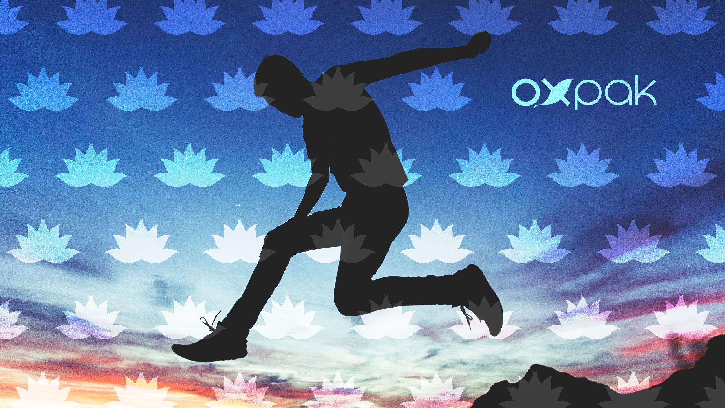 oxpak-websiteheader.jpg