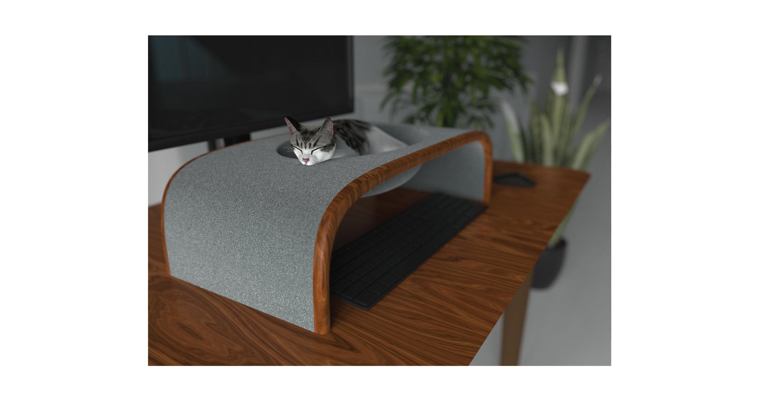 CatMatter-renderanglecloseup.jpg