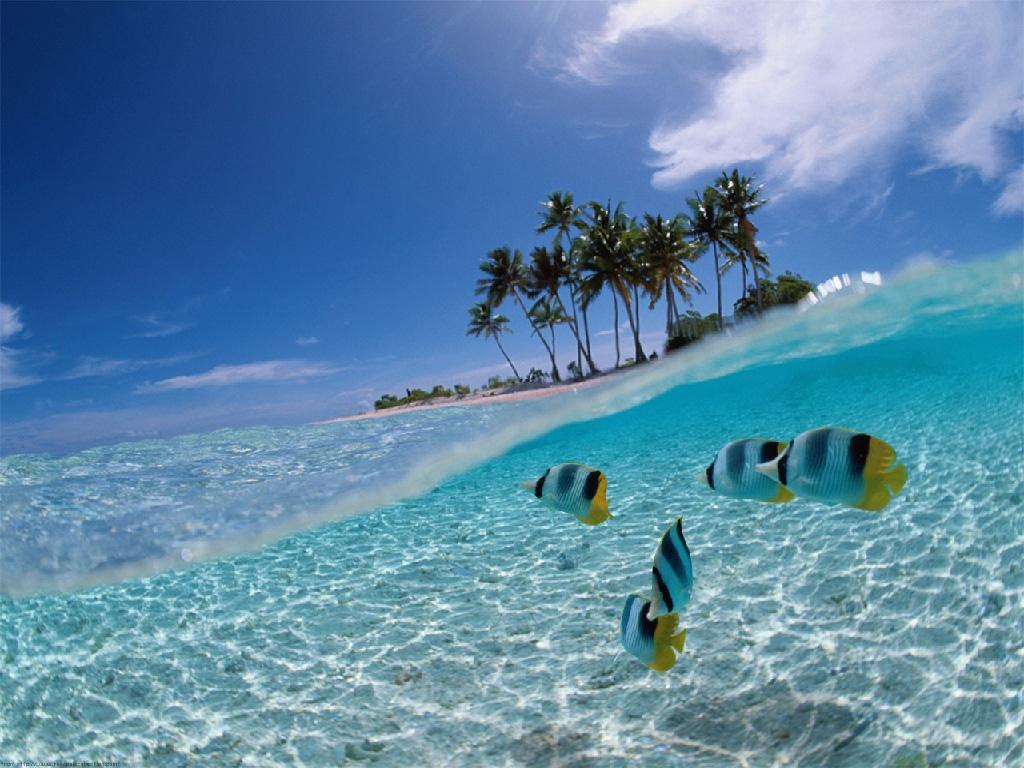 Getaway to Jamaica