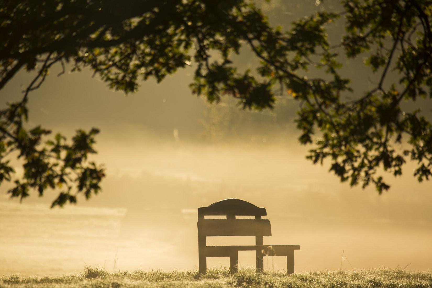 chair summer.jpeg
