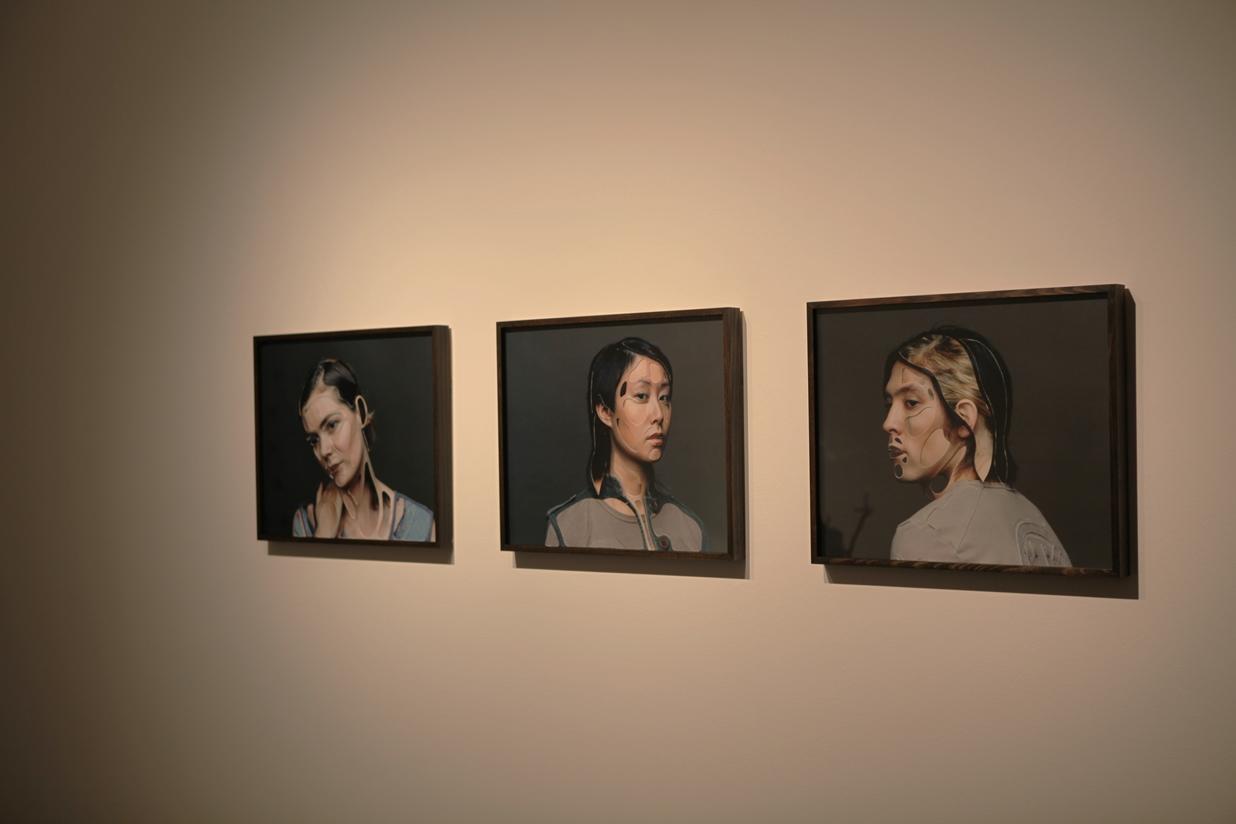 True Self: David Rosetzky Selected Works , 2013(install)  Photograph: Maura Edmond