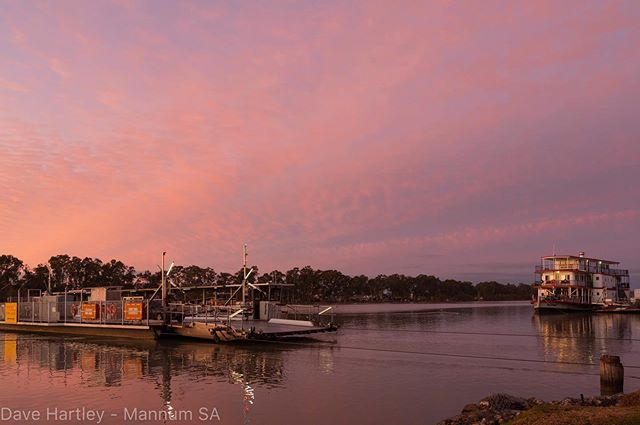 Looking away from the sunrise this morning at Mannum- quick visit due to a breakfast shift at the motel, lucky to live and work in a beautiful town