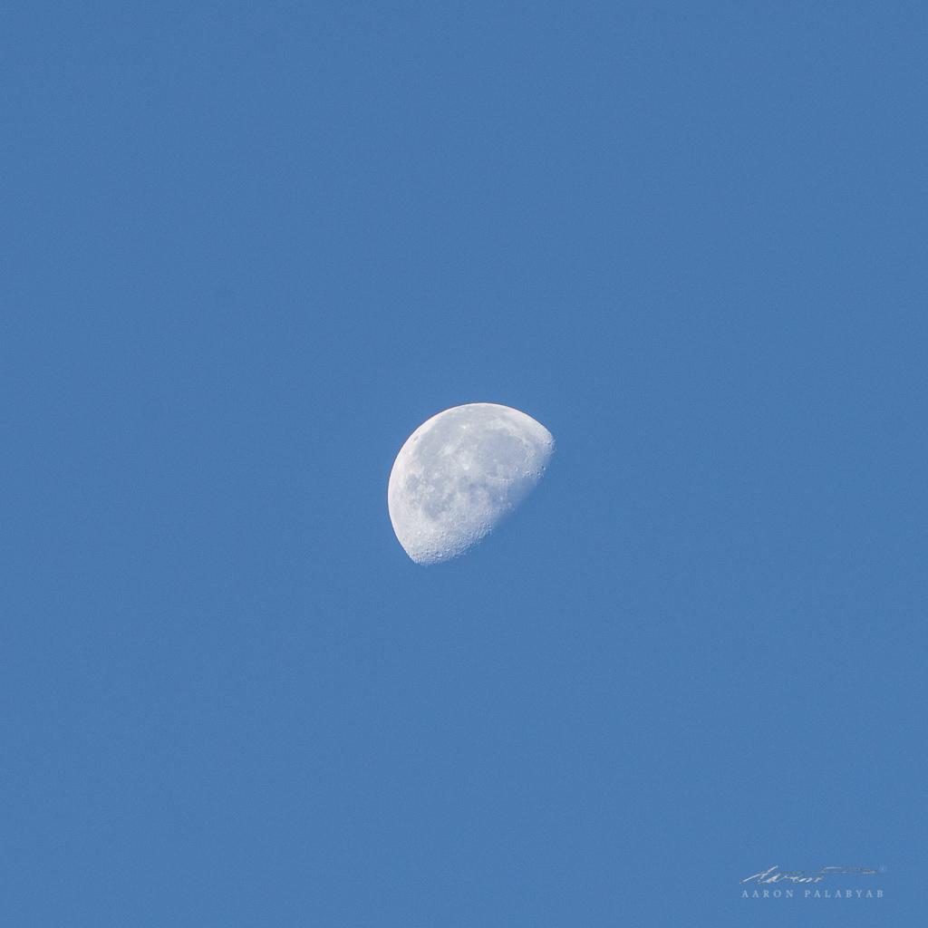 The moon still bright at 6:30am