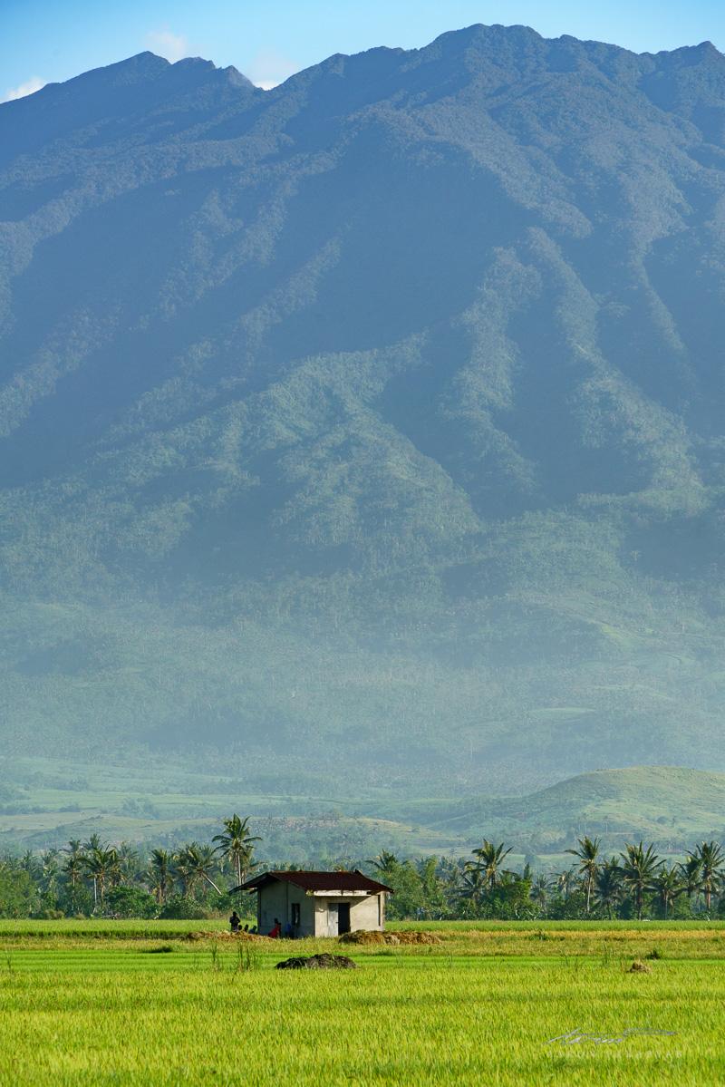 Mt. Isarog