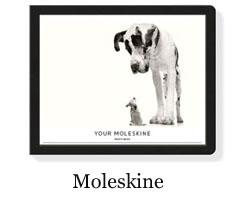 moleskine Photo book.jpg