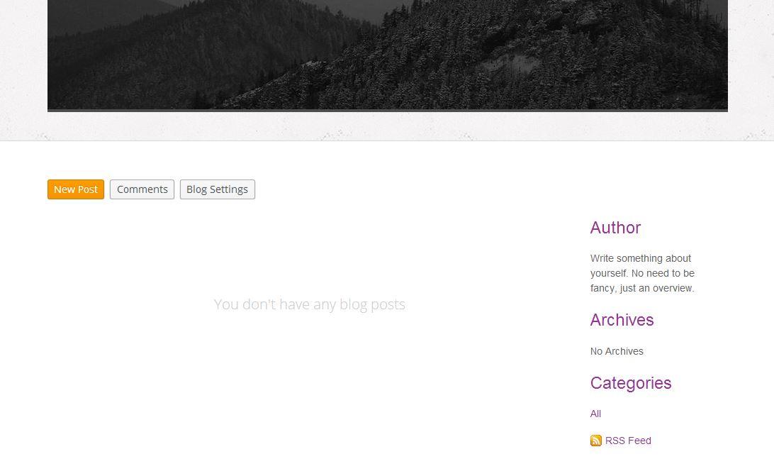 Blog settings 3