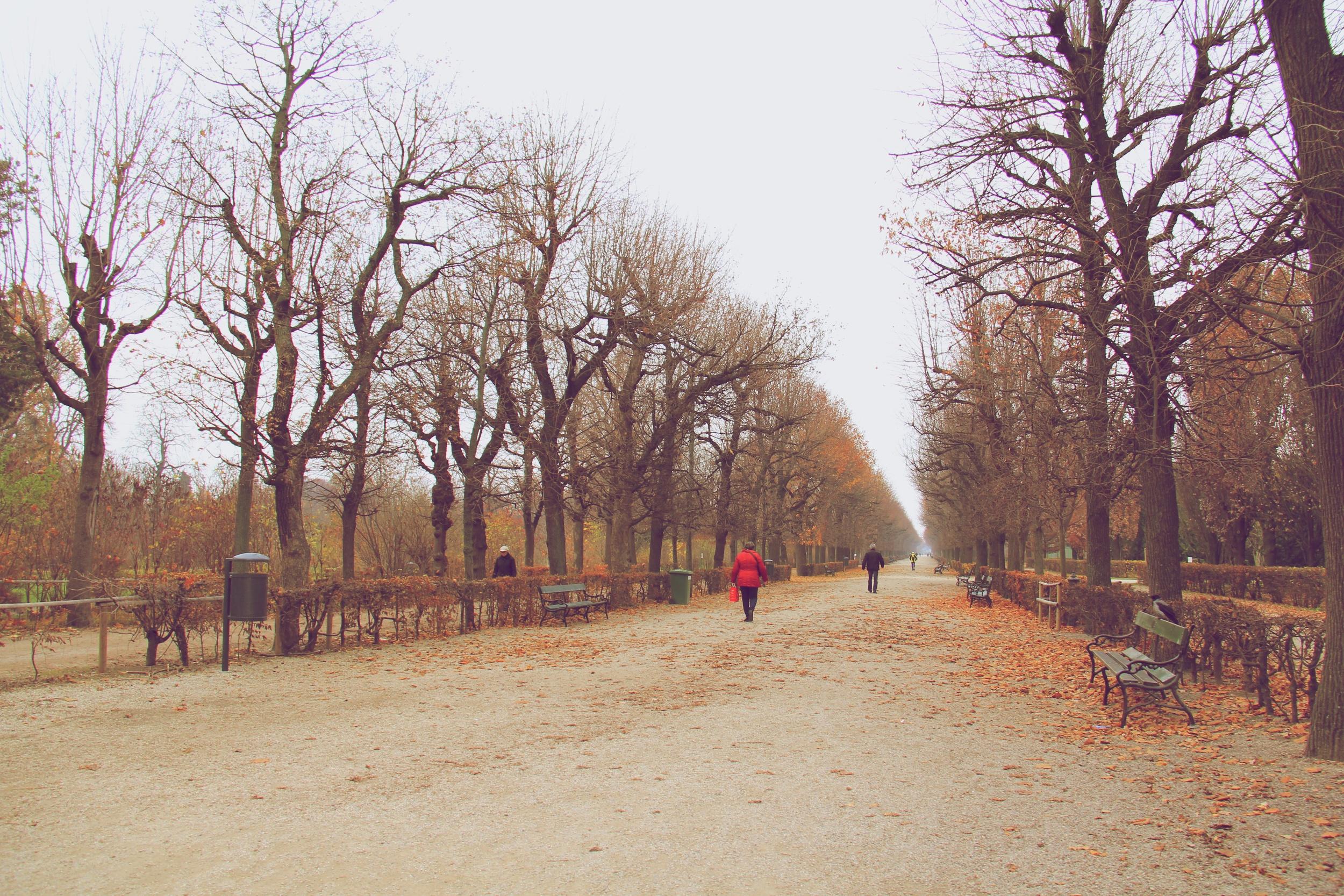 Prater_Herbst_Wien