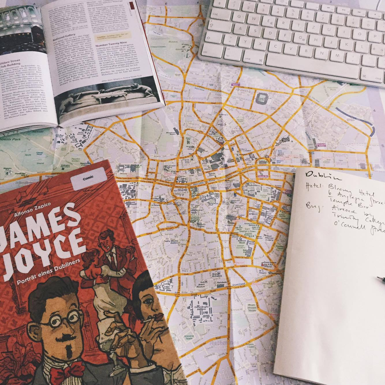 Leseempfehlung: James Joyce Porträt eines Dubliners von Alfonso Zapko