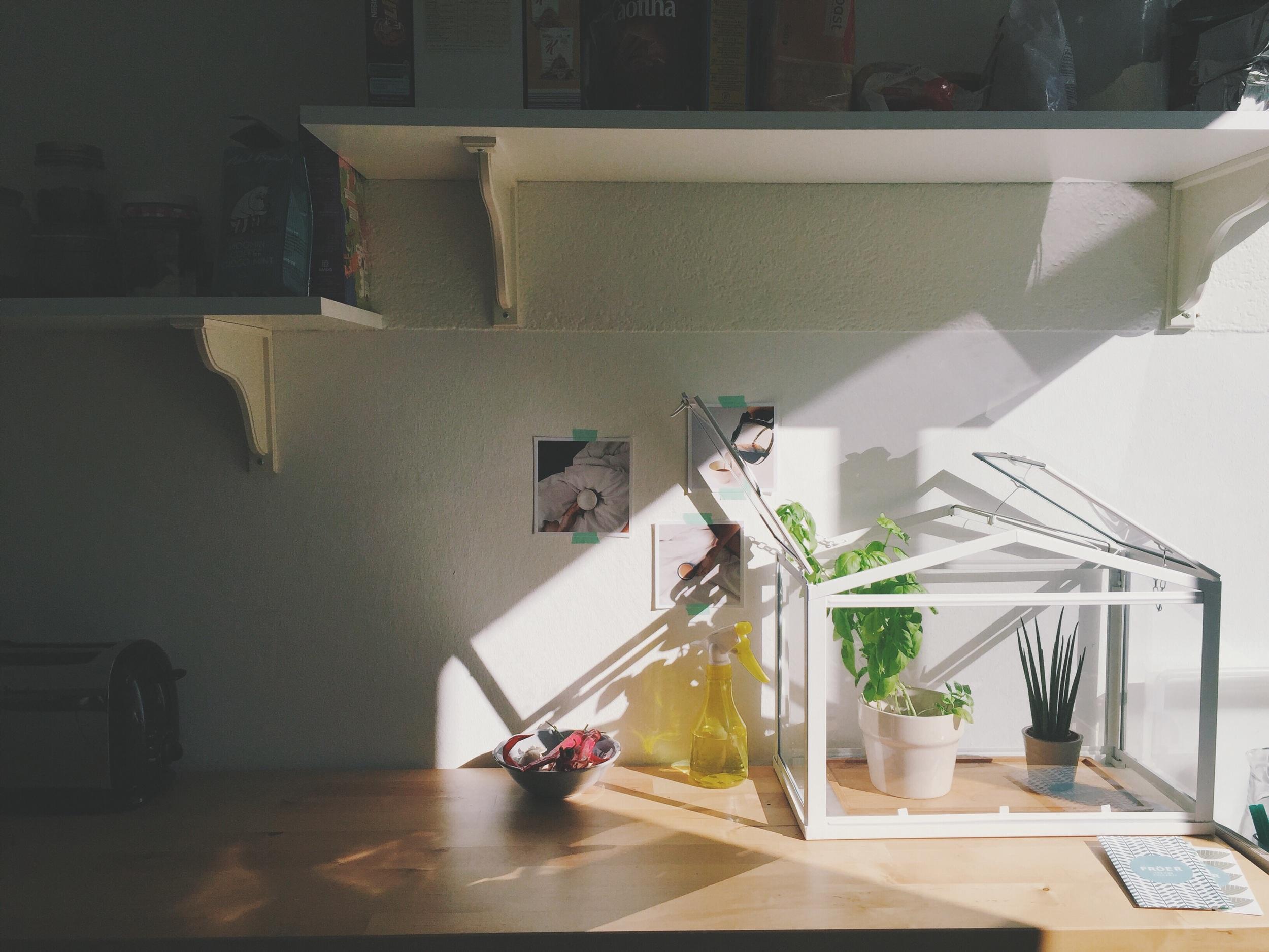 Basilikumpesto IKEA Annina Berweger