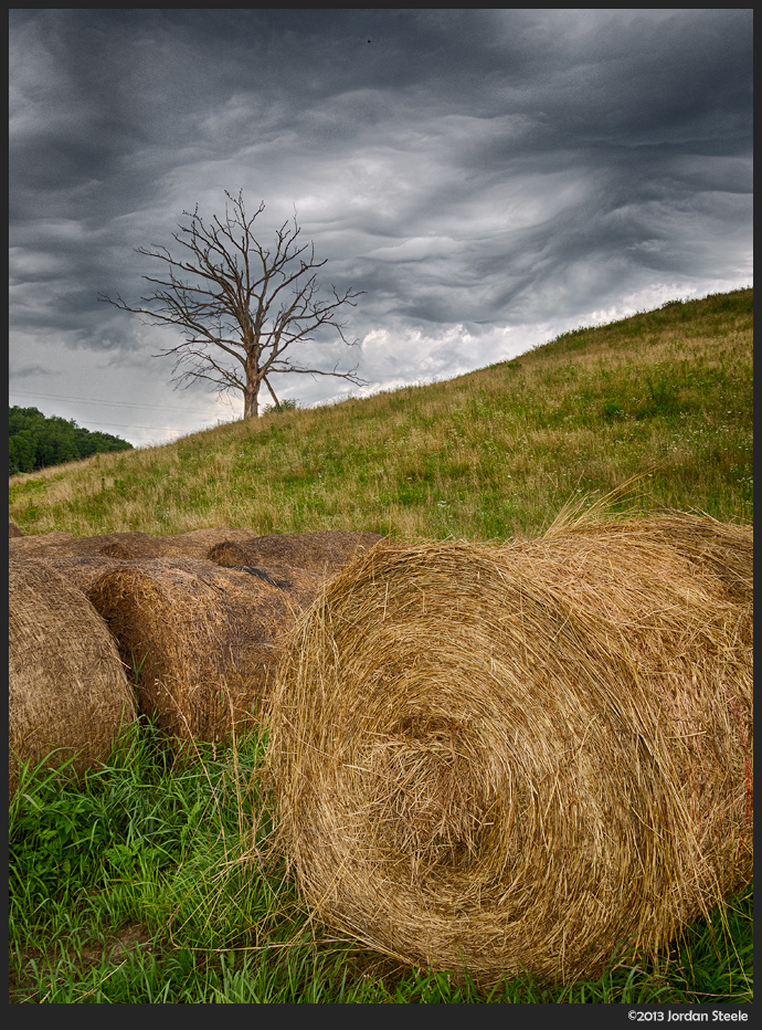 tree_bales_hdr.jpg