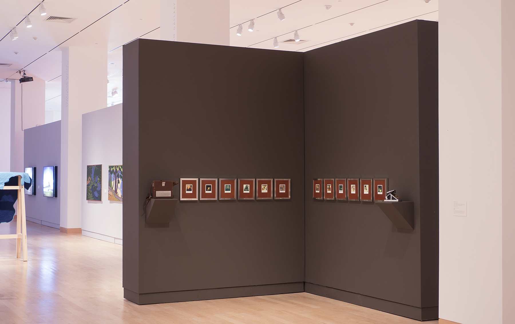 Installation view, Wisconsin Triennial Exhibition, Madison Museum of Contemporary Art, September 2013-January 2014. Installation consists of twelve SX-70 Polaroids, Impossible Project film, embossed vintage chrome and leather SX-70 Polaroid camera body and leather carrying case.