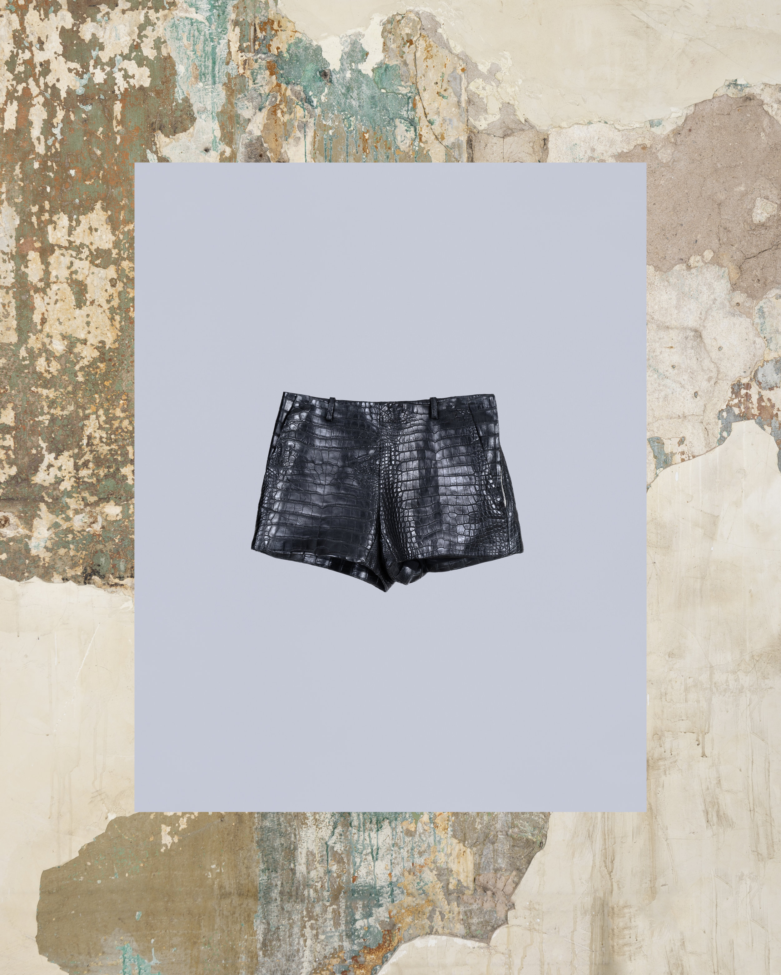 Gator_w_shorts_front.jpg