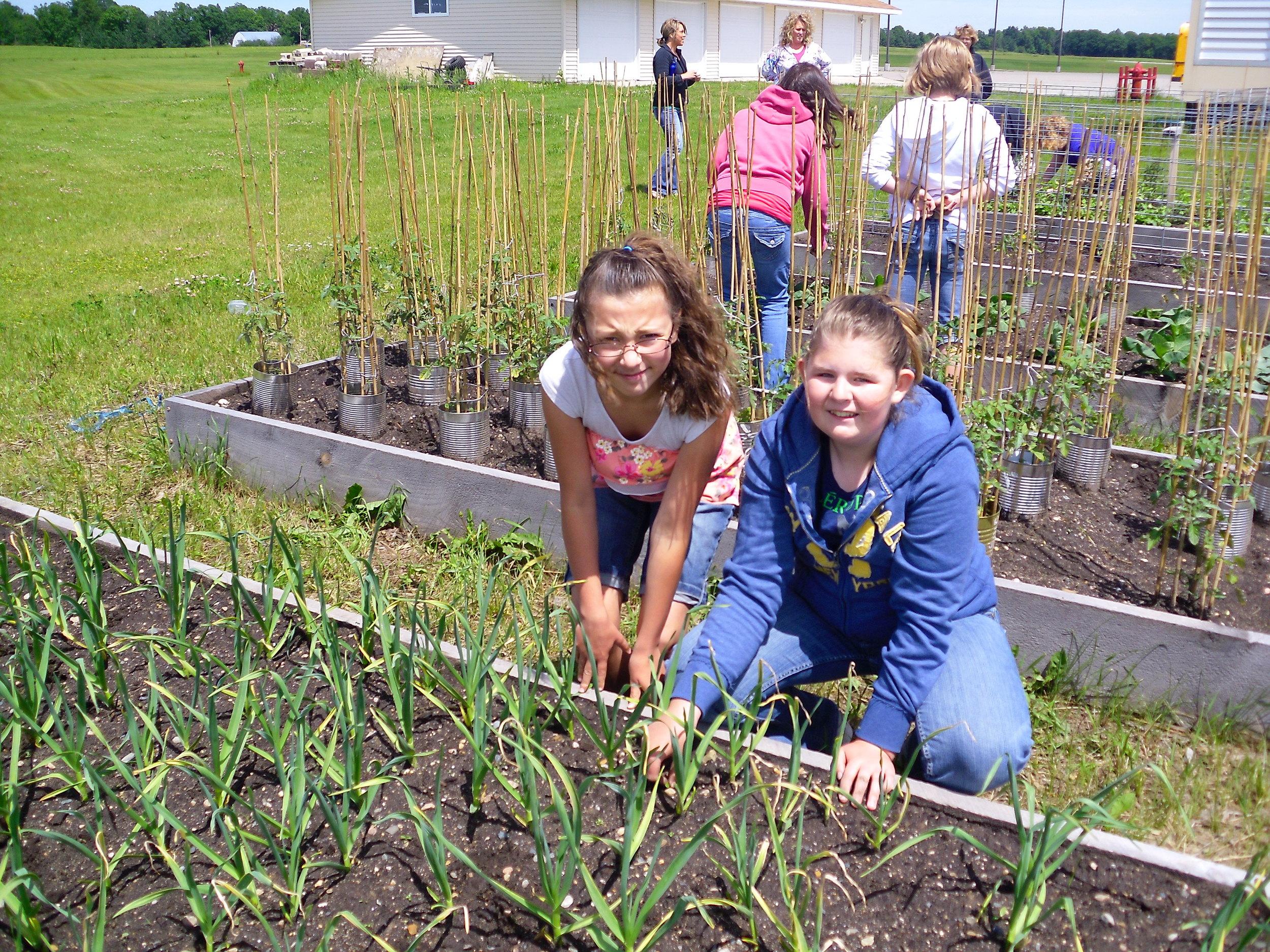 school garden 2011 016.jpg